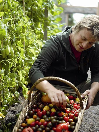 Jamie Oliver with tomatoes at his kitchen garden in Essex