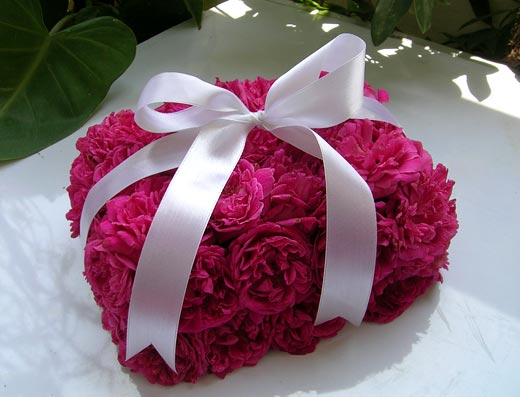 A Lovely Box of Pink Roses with Satin Bow - Wrapped in Love