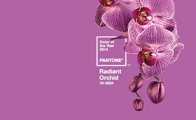 Pantone Color of the Year 2014 is Radiant Orchid – Another shade of purple