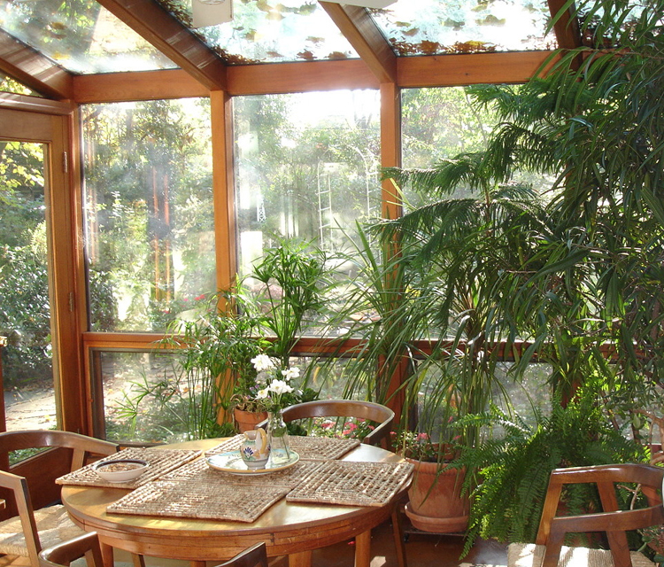 Green plants make sunrooms pretty and soulwarming