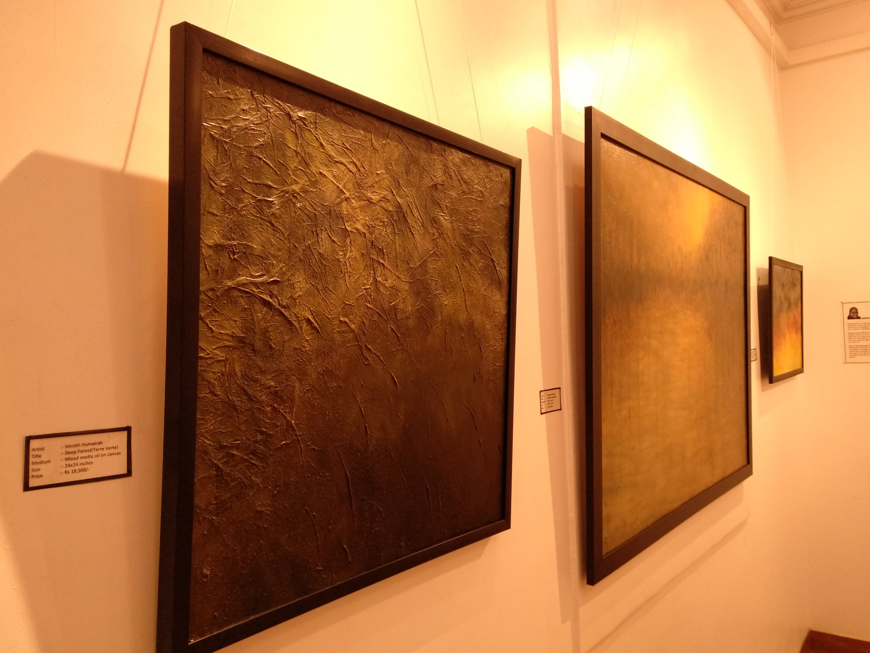 Abstract Nature and Landscape Paintings by Artist Ishrath Humairah in Women's Group Art Show